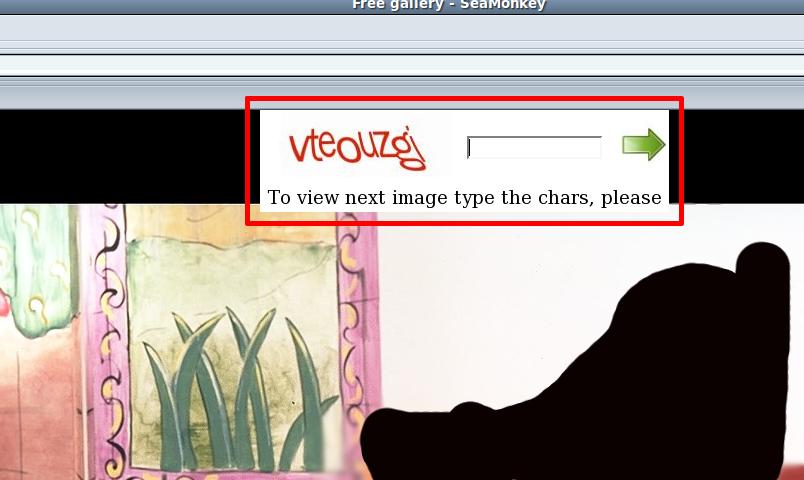 Saisie du code CAPTCHA